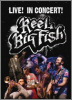 Reel Big Fish Live In Concert DVD